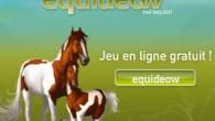 Le jeu par navigateur Equideow est un jeu de gestion et de simulation très ludique et agréable. Le joueur est plongé dans l'univers de l'équitation et de chevaux et devra […]